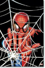 MARVEL COMIC BOOK HERO SPIDERMAN WEB 22x34 POSTER FREE SHIPPING