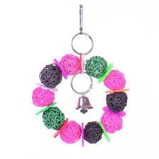 Bunt Vogelspielzeug Papageienspielzeug Papagei Ball Glocke Schaukel Spielzeug