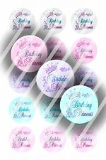 Pre-Cut Bottle Cap Images Birthday Princess Collage Sheet R115 - 1 Inch Circles