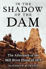 In the Shadow of the Dam : The Aftermath of the Mill River Flood Of 1874 by...