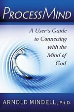 Processmind: A User's Guide to Connecting with the Mind of God, Arnold Mindell,