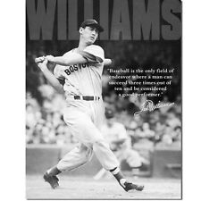 Vintage Replica Tin Metal Sign Ted Williams baseball player ball glove bat 1507