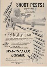 Vintage 1952 Winchester rifle varmint cartridge loads SHOOT PESTS! ammo print ad