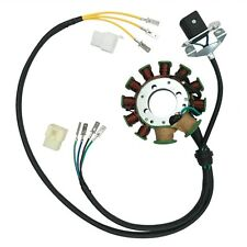Magneto Stator 11Pole 200cc 250cc Bashan Taotao Dirt Bike ATV Quad Coil 93mm