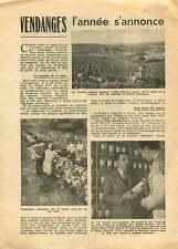 Harvest Wines Vendanges Vins Champagne Charente Gironde Gers 1951 ILLUSTRATION