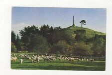 One Tree Hill Auckland Plain Back New Zealand 556a
