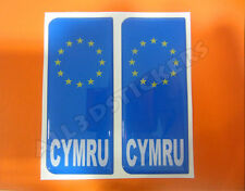 2x3D Sticker Resin Domed Euro WALES Number Plate Car Badge Adhesive Vinyl Decal