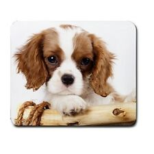 CAVALIER KING CHARLES SPANIEL DOG Puppy COMPUTER MOUSEPAD MOUSE PAD 94289112