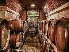 PHOTO COMPOSITION WINE CELLAR VINO BARREL IRON GATE VINEYARD POSTER BMP10757