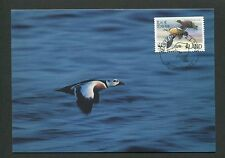 ALAND MK FAUNA WWF ENTE ENTEN DUCK MAXIMUMKARTE CARTE MAXIMUM CARD MC CM d8308