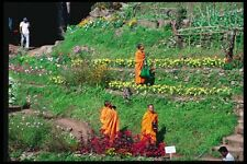 147065 Chiang Mai Meo Village Monks A4 Photo Print