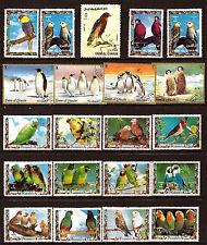UMM EL KIWAIN  OISEAUX-BIRDS: les inséparables,aigle,perroquet,pingouins  1m268A