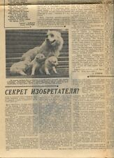 1959 Otvazhnaya Space Dog Zhemchuzhnaya Dogs Russian Soviet Newspaper
