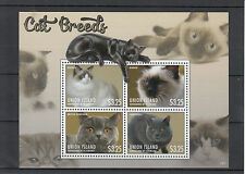 Isola dell' Unione GREN St. Vincent 2013 MNH CAT RAZZE II 4v M / S PETS birman STAMPS
