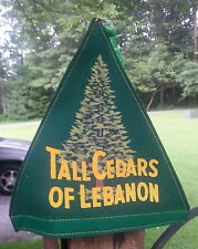 Vintage Felt Masonic Hat TALL CEDARS Valley Forest No 145 Lebanon PA
