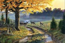"""Canvas Print Animals Deer oil painting Picture Printed on canvas 16""""X24"""" P469"""