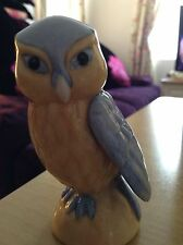 Franklin Mint Little Owl Treasury Of Owls Collection