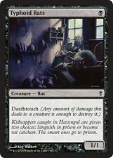 4x Ratti del Tifo - Typhoid Rats MTG MAGIC CNS Conspiracy English