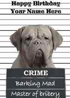Dogue De Bordeaux  A5 Personalised Greeting Card Happy Birthday ref314 dog