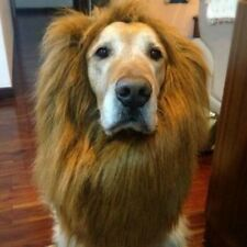 LARGE DOG LION MANE WIG LOTHES COSTUME FUNNY COLLAR GOLDEN RETRIEVER LABRADOR