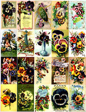 20 - PANSY FLOWER - 155 LB SCRAPBOOK PAPER CRAFT CARD TAGS - VINTAGE STYLE L