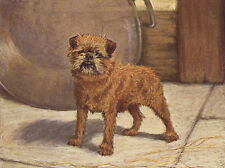 BRUSSELS GRIFFON CHARMING DOG GREETINGS NOTE CARD LOVELY STANDING DOG