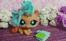 Littlest Pet Shop ♡☆ #649  Crouching Cat Kitty ☆♡ Katze  ☆♡ LPS