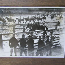 PHOTOGRAPHIE DE PRESSE 1938 US ARMY CAVALERY TRAINING WEST POINT MILITARY ACADEM