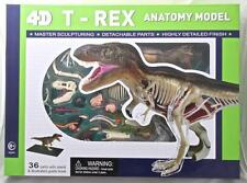 4D T Rex Dinosaur Anatomy Model with Stand Highly Detailed Detach Parts BUILD