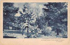 Cartolina - Postcard -  Alberi con neve -  poesia L.Gualdo - anni '20