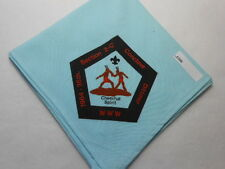 SECTION 2-C CONCLAVE 1984 36TH DITTMER NECKERCHIEF  E200