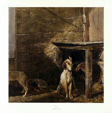 ANDREW WYETH VeryRare OOP 1972 Large Collotype RACCOON, New York Graphic Society