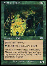 MTG WALL OF MULCH - MURO DI PACCIAME - ONS - MAGIC
