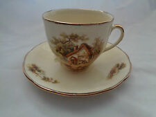 Vintage Alfred Meakin England Country Farm Cottage Scene The Rest Cup And Saucer