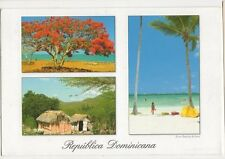 Republica Dominicana Flamboyan 2001 Postcard 092a