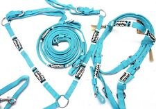 D.A. Brand Horse Size Teal Nylon Bridle Set w/Breast Collar and Rawhide Accents