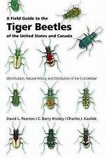 A Field Guide to the Tiger Beetles of the United States and Canada :...