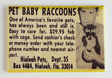 Pet Baby Raccoon FRIDGE MAGNET (2.5 x 3.5 inches) comic book advertisement