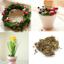 10g Dried Artificial Reindeer Moss Plant For Flower Hanging Basket Lining Decor