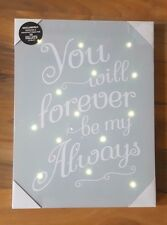 NEW DUCKEGG BLUE WHITE LED LIGHT UP FOREVER BE MY ALWAYS CANVAS WALL ART PICTURE