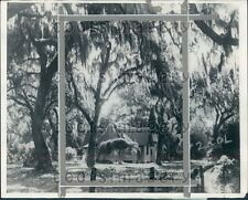 1929 Christ Church Frederica Sea Island GA Shrouded in Spanish Moss Press Photo