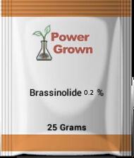 Brassinolide 0.2% 25 Grams plant steroid plant growth regulator hormone