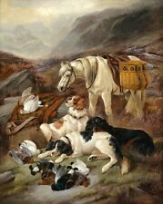 Wholesale oil painting white horse with Hound dogs Prey - dead birds Pigeons 36""