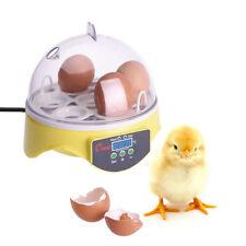 7 Eggs Digital Clear Egg Incubator Hatcher Turning Temperature Control Plug US