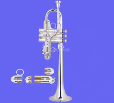 Professional Silver Eb/D Trumpet Monel Valves horn With Case