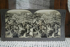 lot of 3 antique old WWI PHOTOS pontoon bridge rowboats France soldiers ruins &