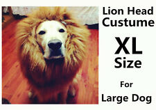 Unique Cute Lion Mane Wig Head Warm Hat For Large Dog Free post worldwide
