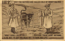 why the natives are called isle of wight calves !