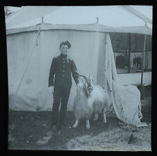 Real Photo Magic Lantern Slide Military Boy Soldier Regimental Ram Mascot c1900