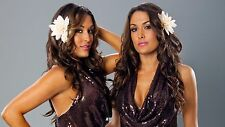 The Bella Twins WWE 24 x 36 Poster (flowers)